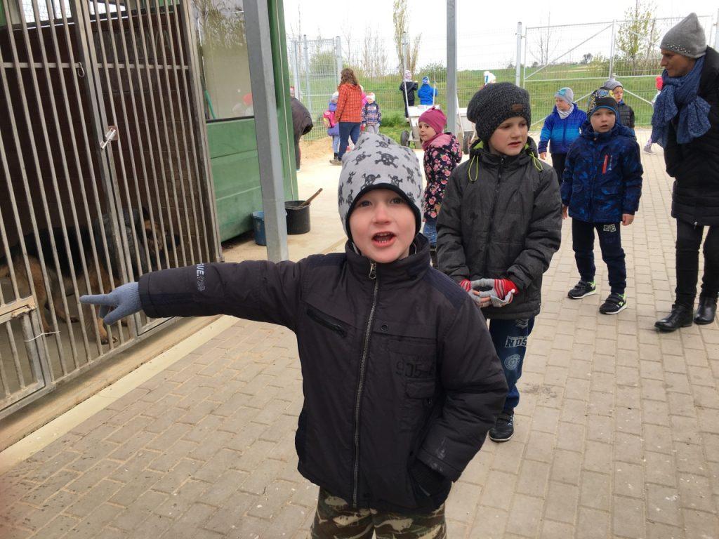 schronisko przedszkole